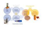 Produktgestaltung - Formulierungstechnologie - product design - formulation technology 2